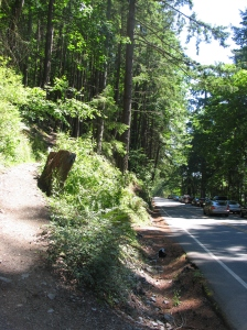 Off of Chuckanut Drive SR11 mile marker 10